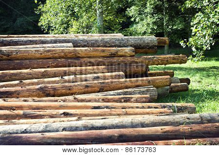 Logs For Building New Log Homes