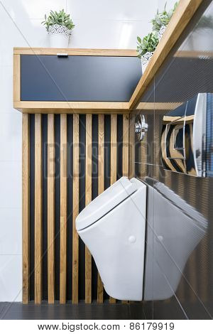 Toilet Interior With Urinar