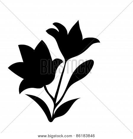 Silhouette Lily.