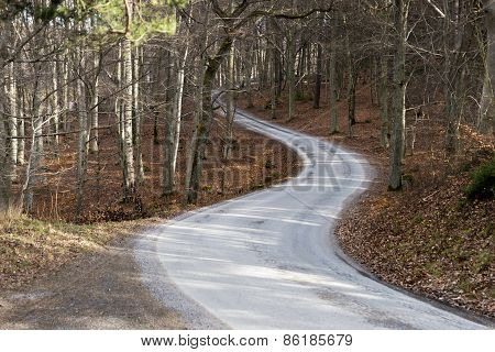 Winding Narrow Road