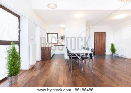 Wooden Parquet And White Walls