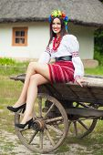 pic of wooden horse  - beautiful young woman wearing national ukrainian clothes sitting on old horse drawn wooden cart - JPG