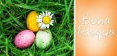 pic of pasqua  - Bona pasqua against orange vignette - JPG