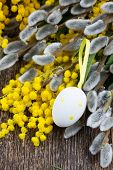 picture of mimosa  - French yellow mimosa and catkins with easter eggs on wooden table - JPG