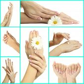 stock photo of french manicure  - Hands with french manicure isolated on white in collage - JPG