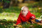 foto of crawling  - Cheerful baby in a red dress playing with yellow leaves - JPG