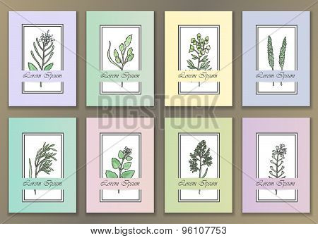 Set Vintage Posters with watercolor herbs