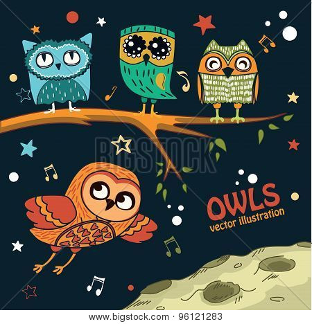 Collection of owls in the night