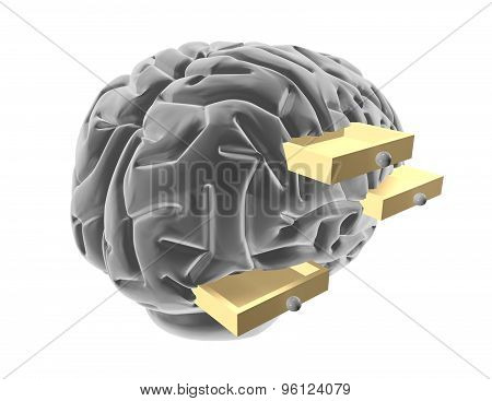 Stereotypes Abstract Concept With Brain.