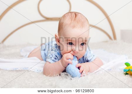 Baby boy gnawing his toy