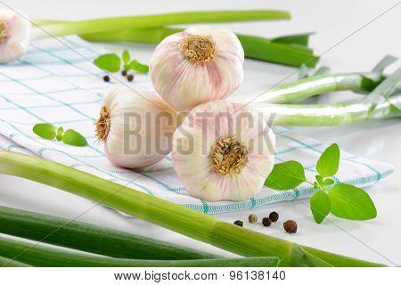 bunch of fresh garlic on checkered dishtowel