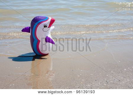 Whale Dolphin Inflatable On The Beach