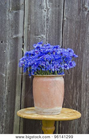 Beautiful Bouquet Blue Cornflowers In Vintage Clay Pot