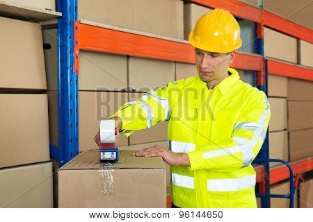 Worker Packing Cardboard Box