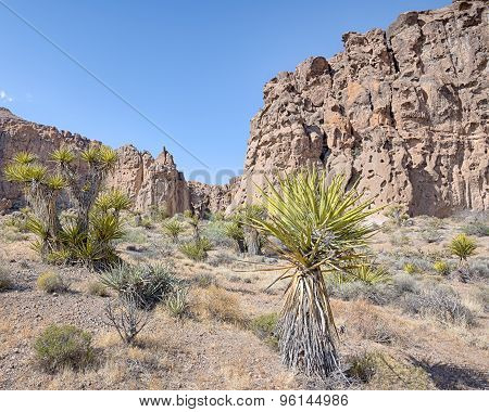 Hole-in-the-wall, Banshee Canyon, Mojave National Preserve, CA