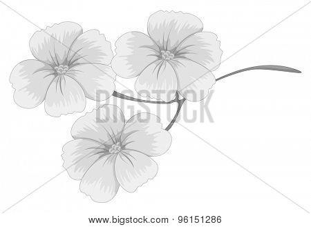 Beautiful flower on single branch
