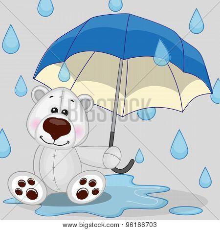 Polar Bear With Umbrella