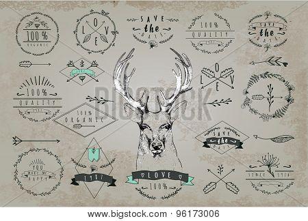 Vintage Dear logo. Design for t shirt