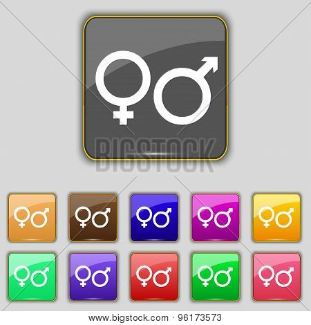 Male And Female Icon Sign. Set With Eleven Colored Buttons For Your Site. Vector