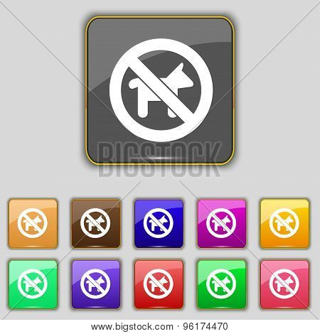 Dog Walking Is Prohibited Icon Sign. Set With Eleven Colored Buttons For Your Site. Vector