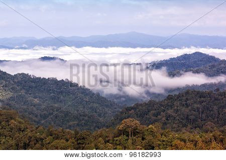 Mountain And Fog In Tropical