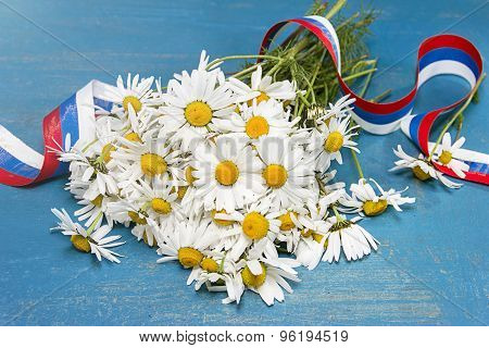 Daisies And Tricolor Ribbon. Day Of Peter And Fevronia