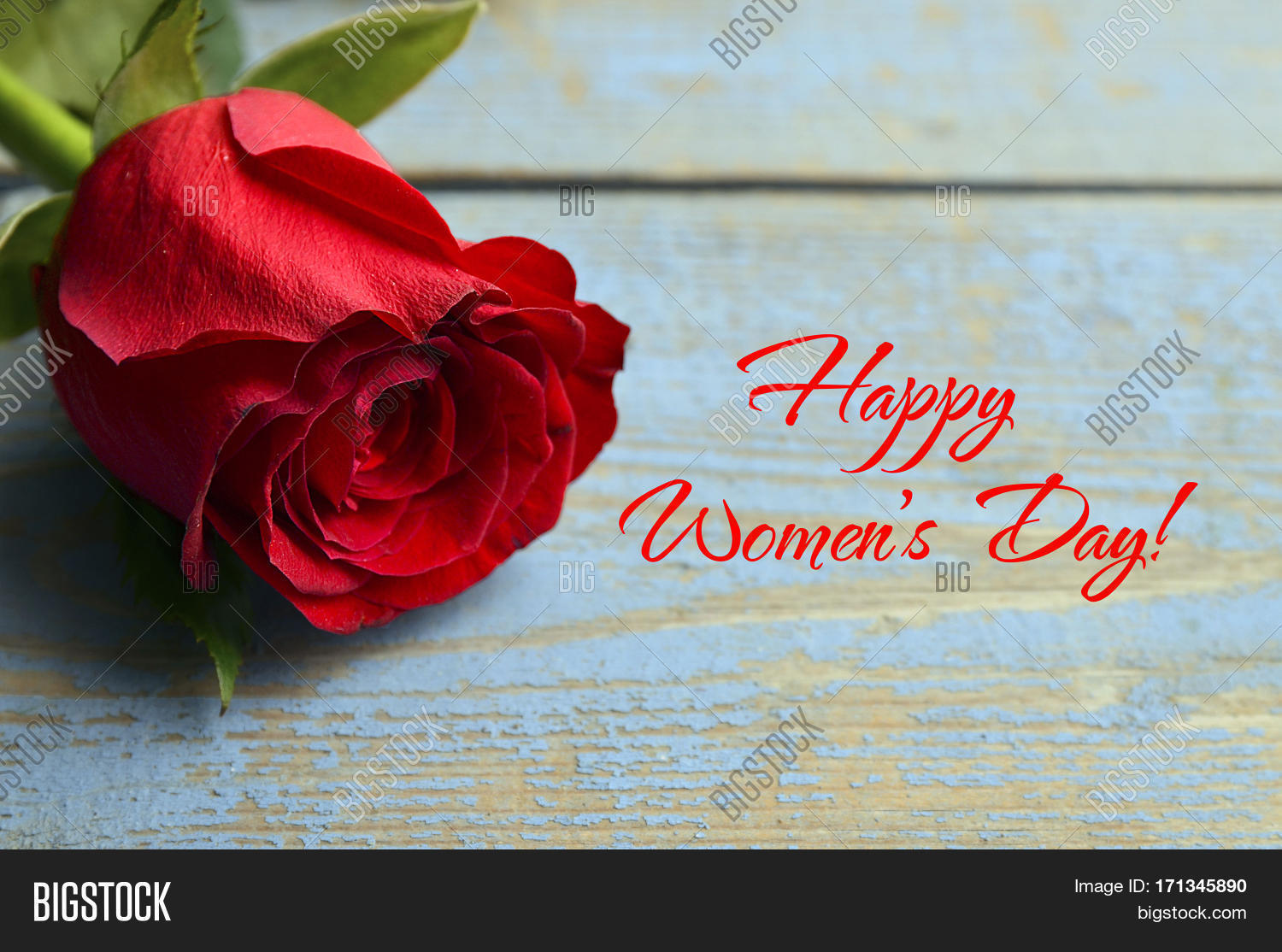 happy womens day rose on a blue old wooden background for women 39 s day international womens day. Black Bedroom Furniture Sets. Home Design Ideas