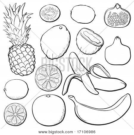 Tropical Fruit Set b&w
