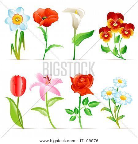 Blume-Satz