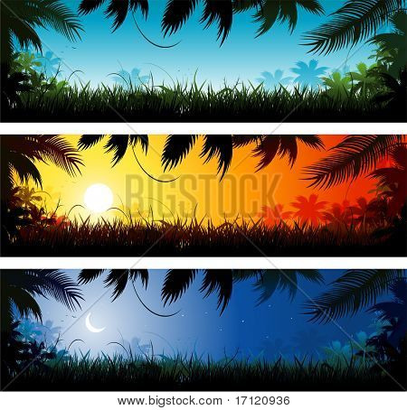 Jungle background landscape