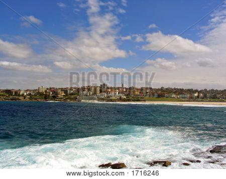 Bondi Beach City View