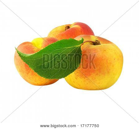 fresh apricot fruits with green leaf isolated with clipping path included