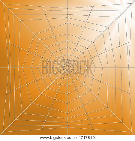 Spiderweb Illustration