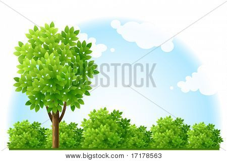summer garden with tree and green bushes - vector illustration