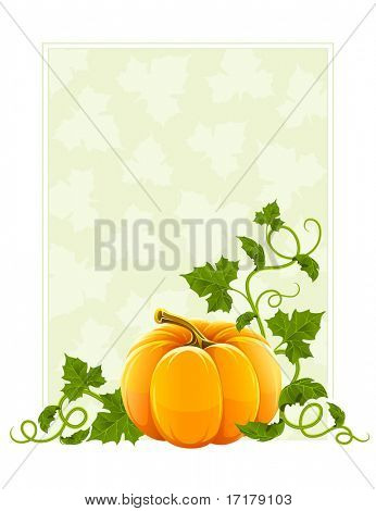 ripe orange pumpkin vegetable with green leaves