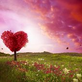 Tree of love in spring. Red heart shaped tree at sunset. Beautiful landscape with flowers.Love backg poster