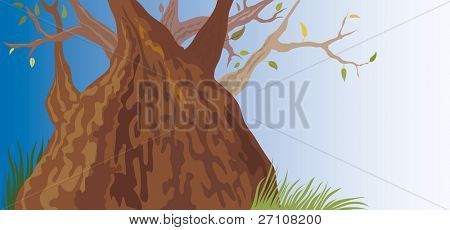 Old Tree (also available vector version of this image in our gallery)