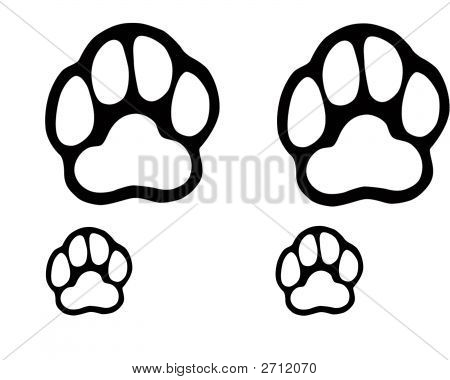 Dog Paws Image Photo