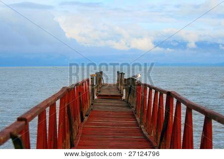 seagull on the old bridge on lake Naivasha. Africa. Kenya