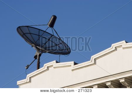 Rooftop Dish