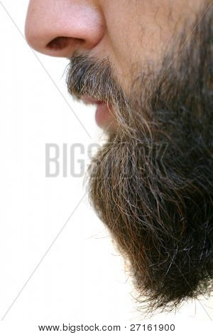 Beard closeup