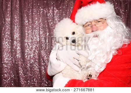poster of Santa Claus with a Dog. Santa holds a small white Bichon Frise dog in a Photo Booth with a Pink Sequ