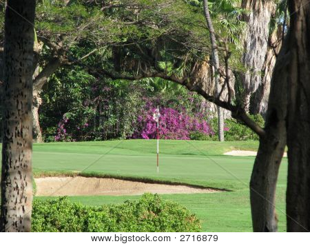 Green At Kaanapali Golf Course