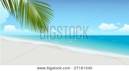 Day beach with palm leaf (RGB)