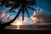 Beautiful Tropical Island Paradise Scenic View With Milky Way And Starry Night Sky With Palm Tree Si poster