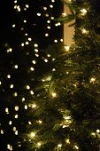 Out of Focus Christmas Tree Lights. Christmas Tree with Out of Focus Twinkle Lights. Room for Text o poster
