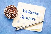 Welcome January -  handwriting on a napkin with a frosty pine cone poster