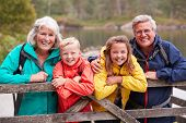 Grandparents and grandchildren leaning on a wooden fence in the countryside laughing, Lake District, poster