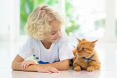 Child Feeding Home Cat. Kids And Pets. poster