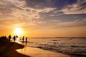 Постер, плакат: Прекрасный закат солнца над горизонтом океан на остров Занзибар Танзания